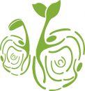 """成都市锦江区社会组织发展基金会 2019年度""""种子计划""""(TSP)公益项目—研究类项目征集公告"""